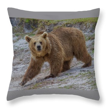 Brown Bear 3 Throw Pillow
