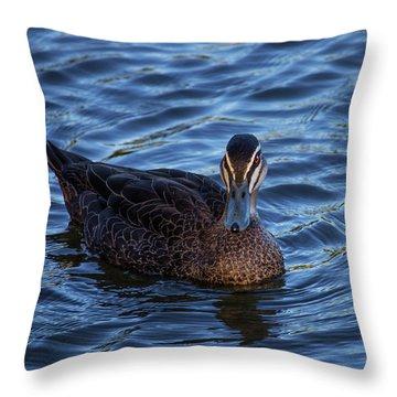Brown Duck 2 Throw Pillow