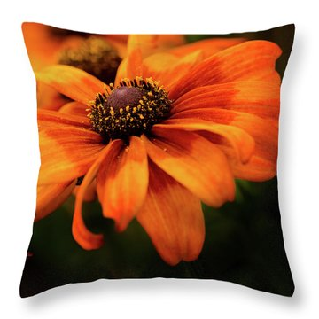 Throw Pillow featuring the photograph Brown Eyed Susan by Mary Jo Allen