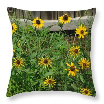 Brown Eyed Susans Throw Pillow by Robyn Stacey