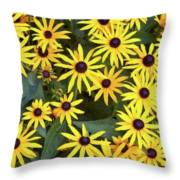 Brown Eyes On The Greenway Throw Pillow