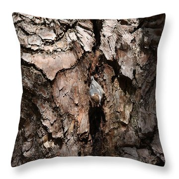 Brown-headed Nuthatch Throw Pillow