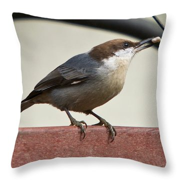 Throw Pillow featuring the photograph Brown-headed Nuthatch by Robert L Jackson