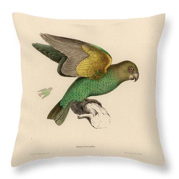 Brown-headed Parrot, Piocephalus Cryptoxanthus Throw Pillow