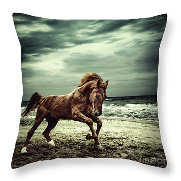 Brown Horse Galloping On The Coastline Throw Pillow