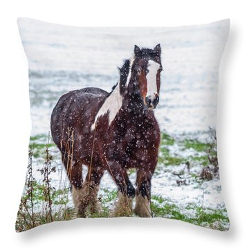 Brown Horse Galloping Through The Snow Throw Pillow