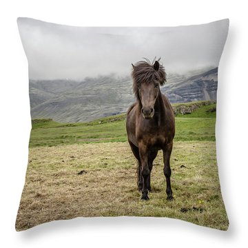 Throw Pillow featuring the photograph Brown Icelandic Horse by Edward Fielding