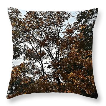 Brown Throw Pillow by Jana E Provenzano
