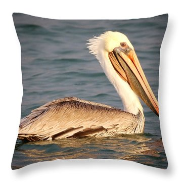 Brown Pelican Floating Throw Pillow