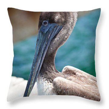 Brown Pelican Friend Throw Pillow by Michelle Wiarda