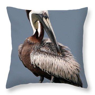 Throw Pillow featuring the photograph Brown Pelican by Ken Barrett