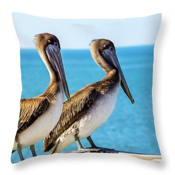 Brown Pelican Pair Throw Pillow