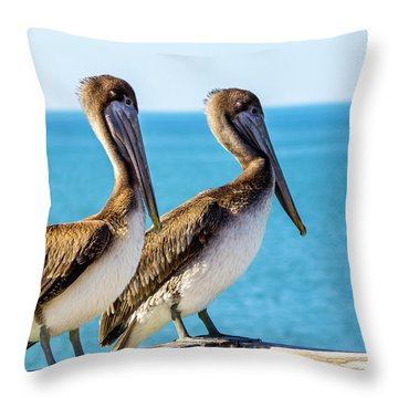 Brown Pelican Pair Throw Pillow