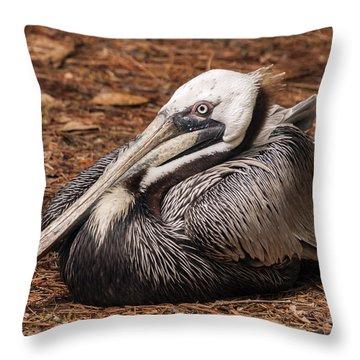 Brown Pelican Relaxing Throw Pillow