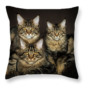 Brown Siblings Throw Pillow
