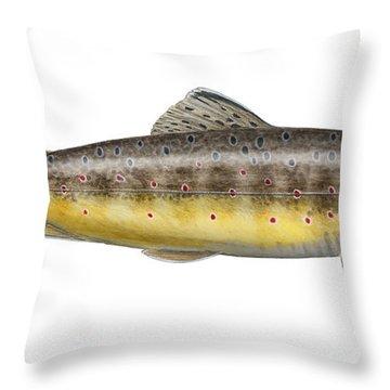 Brown Trout - Autochthonous - Indigenous - Salmo Trutta Morpha Fario - Salmo Trutta Fario Throw Pillow