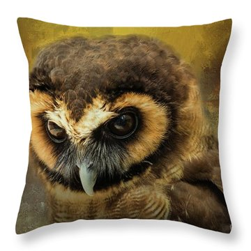 Brown Wood Owl Throw Pillow