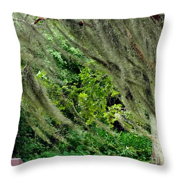 Brownwell Memorial Park Throw Pillow