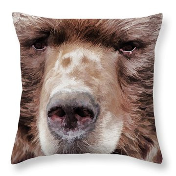 Bruin Throw Pillow