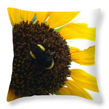 Brunch Throw Pillow by Terry Anderson