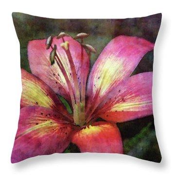 Brushed 3454 Idp_2 Throw Pillow