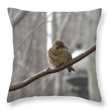 Bryant Park Bird Nyc Throw Pillow by Henri Irizarri