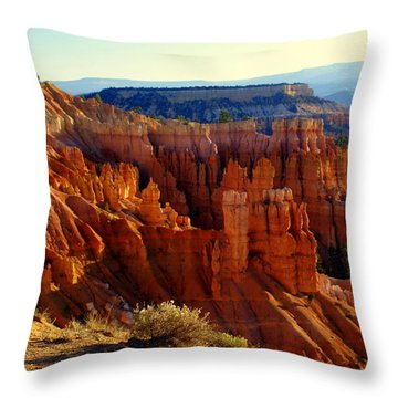 Bryce 3 Throw Pillow by Marty Koch
