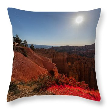 Bryce 4456 Throw Pillow
