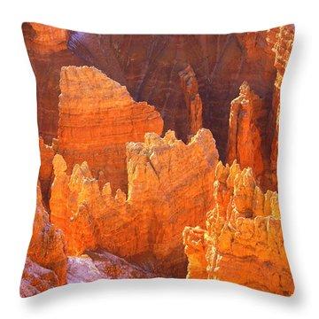 Bryce Ablaze Throw Pillow by Marty Koch