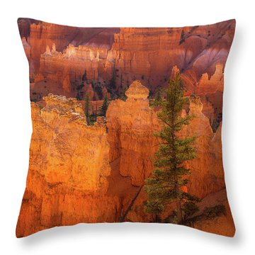 Bryce Canyon And Tree Throw Pillow