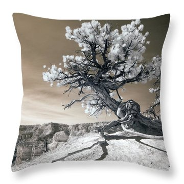 Canyons Throw Pillows