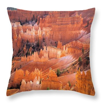 Bryce Glow Throw Pillow