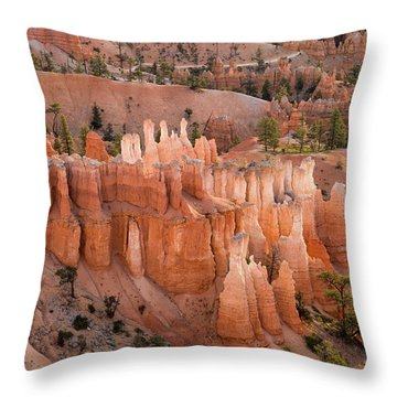 Bryce Morning View Throw Pillow