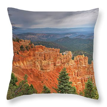 Bryce Squall Throw Pillow