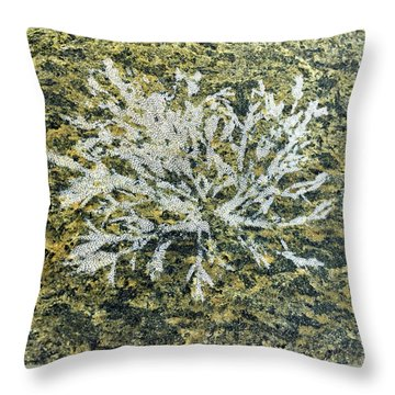 Bryozoan Life Throw Pillow