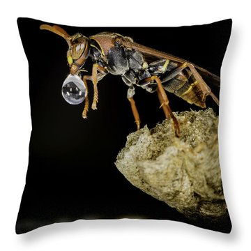 Throw Pillow featuring the photograph Bubble Blowing Wasp by Chris Cousins