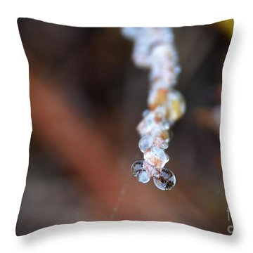Bubble Eyed Water Drops- Loganville Georgia Throw Pillow