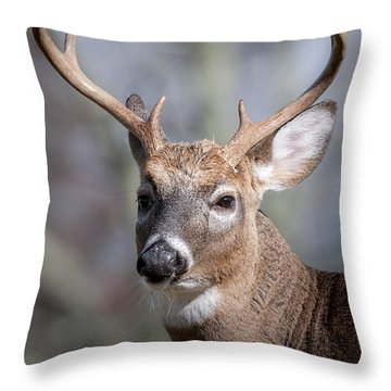 Buck Headshot Throw Pillow