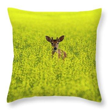 Buck In Canola Throw Pillow