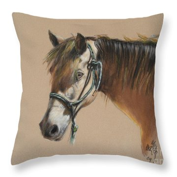 Buck Of The Morgan Horse Ranch Prns Throw Pillow