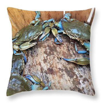 Bucket Of Blue Crabs Throw Pillow by Jennifer Casey