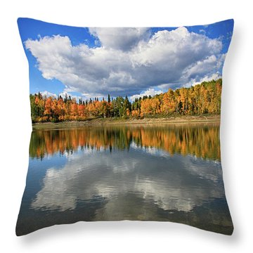 Buckhorn Reflections Throw Pillow