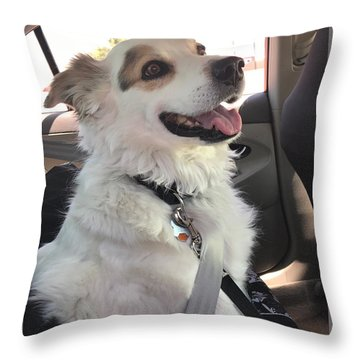 Buckle Up Throw Pillow