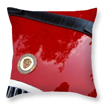 Throw Pillow featuring the photograph Buckle Up by John Schneider