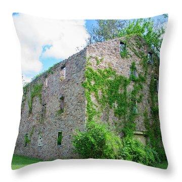 Throw Pillow featuring the photograph Bucks County Pa - Bridgetown Millhouse Ruins by Bill Cannon