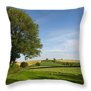 Bucolic Mid Devon Throw Pillow