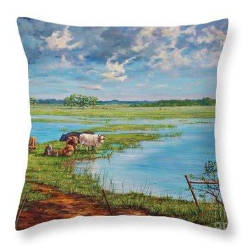 Bucolic St. John's Throw Pillow