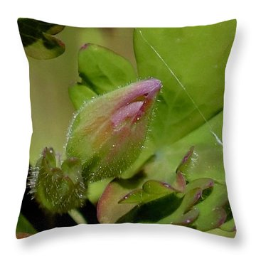 Bud And Spider Silk Throw Pillow
