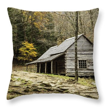 Bud Ogle Cabin 05 Throw Pillow