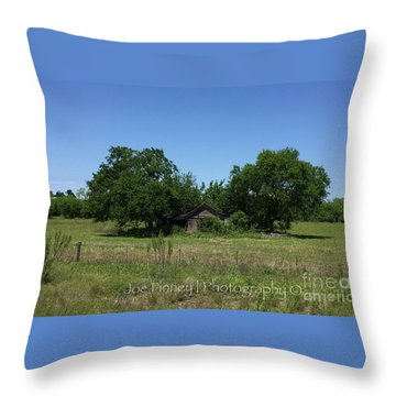 Throw Pillow featuring the photograph Buda Sweet Home - #42116 by Joe Finney